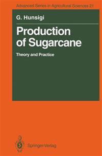 Production of Sugarcane