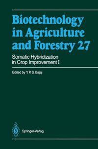 Somatic Hybridization in Crop Improvement I