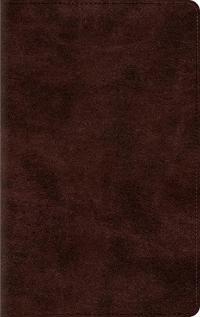 Thinline Bible-ESV