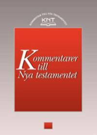 KNT 19 : Johannesbreven