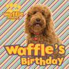 Waffle's Birthday