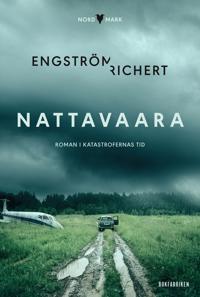Nattavaara : roman i katastrofernas tid
