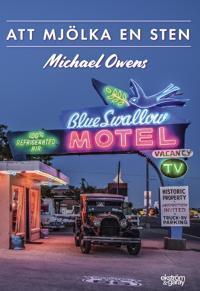 Att mjölka en sten - Michael Owens | Laserbodysculptingpittsburgh.com