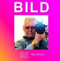 BILD - Max Erixon pdf epub