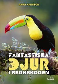 Fantastiska djur i regnskogen