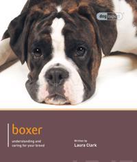 Boxer - Dog Expert