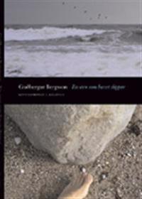 En sten som havet slipar : levnadsroman