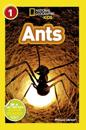 National Geographic Kids Readers: Ants