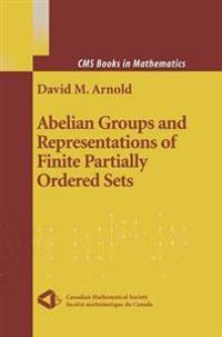 Abelian Groups and Representations of Finite Partially Ordered Sets
