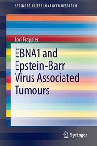 EBNA1 and Epstein-Barr Virus Associated Tumours