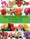 Rhododendrons & Azaleas