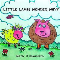Little Lambs Wonder Why?