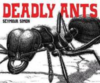 Deadly Ants