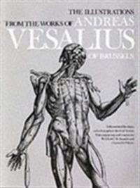 The Illustrations from the Works of Andreas Vesalius of Brussels; With Annotations and Translations, a Discussion of the Plates and Their Background,