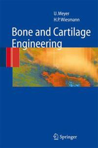 Bone and Cartilage Engineering