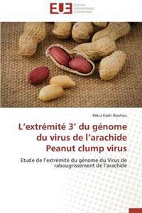 L Extr�mit� 3 Du G�nome Du Virus de L Arachide Peanut Clump Virus