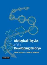 Biofysiikka