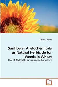 Sunflower Allelochemicals as Natural Herbicide for Weeds in Wheat