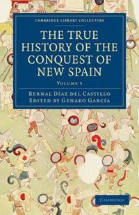 The True History of the Conquest of New Spain Vol 4