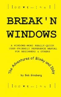 Break'N Windows