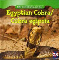 Egyptian Cobra/Cobra Egipcia