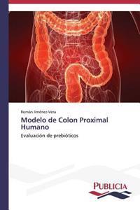 Modelo de Colon Proximal Humano