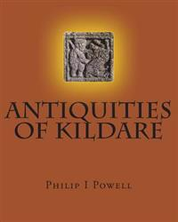 Antiquities of Kildare: Guide to