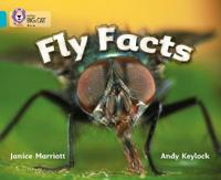 Fly Facts