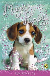 Magic puppy: the perfect secret