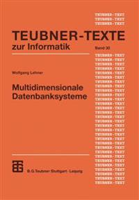 Multidimensionale Datenbanksysteme