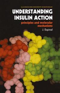 Understanding Insulin Action