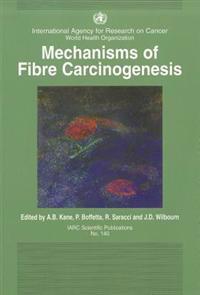 Mechanisms of Fibre Carcinogenesis