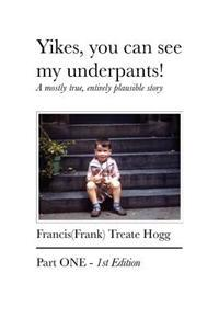 Yikes, You Can See My Underpants!: A Mostly True, Entirely Plausible Story
