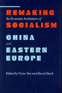 Remaking the Economic Institutions of Socialism