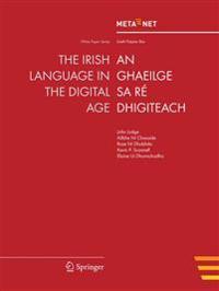 The Irish Language in the Digital Age