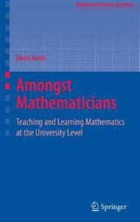 Amongst Mathematicians