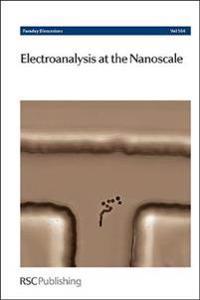 Electroanalysis at the Nanoscale