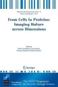 From Cells to Proteins