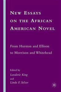 New Essays on the African American Novel