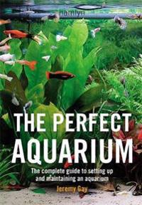 The Perfect Aquarium