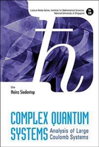 Complex Quantum Systems: Analysis Of Large Coulomb Systems