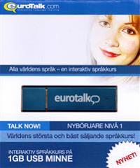 USB Stick Grekiska