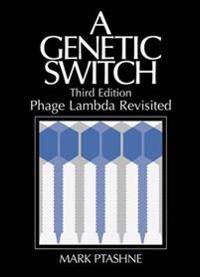 Genetic switch - phage lambda revisited