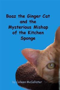Boaz the Ginger Cat and the Mysterious Mishap of the Kitchen Sponge