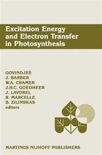 Excitation Energy and Electron Transfer in Photosynthesis