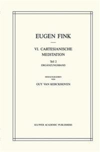 VI. Cartesianische Meditation