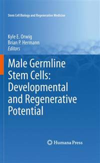 Male Germline Stem Cells