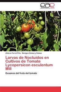 Larvas de Noctuidos En Cultivos de Tomate Lycopersicon Esculentum Mill