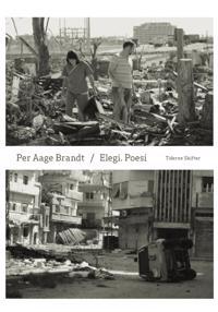 Elegi - poesi