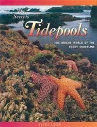 The Secrets of Tidepools